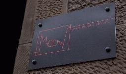 Festival attractions in Meow Studios